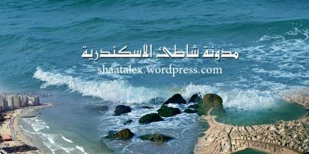 blog shat alexandria