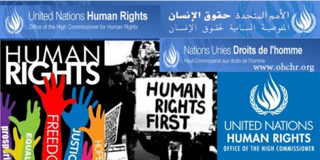 site human rights united nation